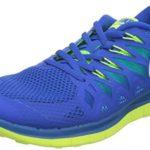 Nike Men's Free Trainer 5.0 V6 Training Shoe